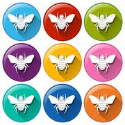 Stock Illustration of Circle buttons with insects