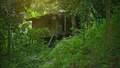 Small wooden house in the forest near the plantations of rubber trees. thaila Stock Footage