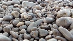 Pebbles on The Seashore HD Stock Footage