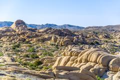 scenic  rocks in joshua tree national park - stock photo