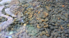 Colorful rolling stones pattern with water flowing and reflection. HD. 1920x1080 Stock Footage