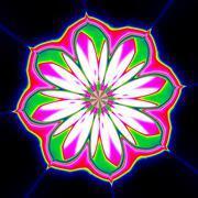 Stock Illustration of Illustration of flower blossom, colorful mandala ornament in black background