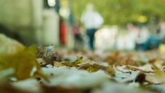 People walking, autumn leaves Stock Footage