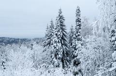 Winter in the mountains of the southern urals Stock Photos
