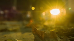 Flickering Sun with Leaf at Sunset Stock Footage