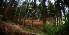 Man on mountain bike jumps in slow motion in woods Stock Footage
