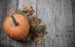 Pumpkin and fall leaves on rustic wood background Stock Photos