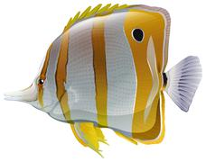 A big fish - stock illustration
