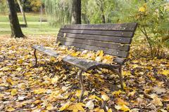 bench in autumn - stock photo