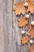 Colorful fall autumn leaves on wood background Stock Photos
