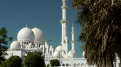 The United Arab Emirates city of Abu Dhabi 033 palm tree and Sheikh Zayed Mosque Stock Footage