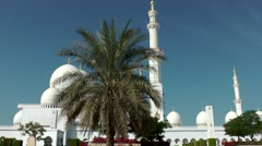 The United Arab Emirates city of Abu Dhabi 035 Sheikh Zayed Mosque and palm tree Stock Footage