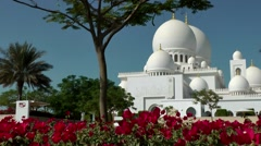 The United Arab Emirates city of Abu Dhabi 036 white Mosque domes behind flowers Stock Footage