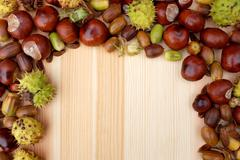 Border of natural fall material - acorns, horse chestnuts, beech - stock photo