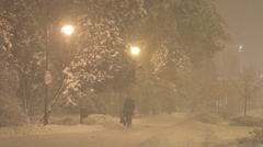 Snowstorm at night in the citypark Stock Footage