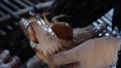CRAB FISHING & SELLING - Close up hands hold crabs over basket Stock Footage
