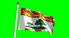 Prince Edward Island flag - stock footage