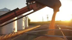 Corn filling grain cart Stock Footage