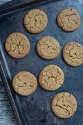 gingersnap cookies for christmas on a baking pan - stock photo
