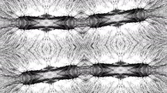 Black and White Patterns spacy Stock Footage