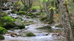 Mediterranean River Cascades in Autumn Stock Footage