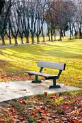 bench in autumnal park - stock photo