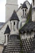 Fontevraud abbey - loire valley , france Stock Photos