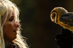 Closeup detail of blond falconry girl gaze to barn owl standing on her hand - stock photo