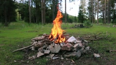 Camp fire in the woods Stock Footage