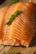 Homemade smoked salmon appetizer Stock Photos