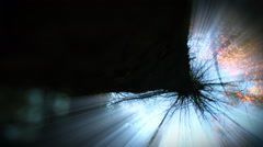 Tree viewed from below with sun rays shining down. Loop. Stock Footage