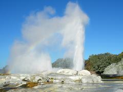 Pohutu geyser in rotorua Stock Photos