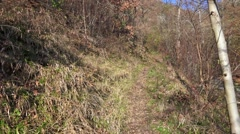 Personal perspective of walking on a path in the forest Stock Footage