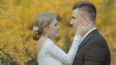 Gentle bride laughing and kissing groom Arkistovideo