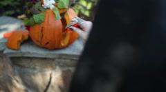 Carving a pumpkin for hallowen Stock Footage