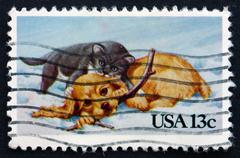 Postage stamp USA 1982 Puppy and Kitty, Christmas - stock photo