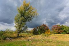 autumn scene before thunderstorm - stock photo