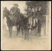 Dapto West Public School - Mervyn Waples, Bernard Clifford on chestnut pony M - free stock photo
