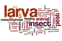 larva word cloud - stock illustration