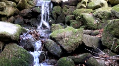 Waterfall in Marlay Park in Dublin Stock Footage
