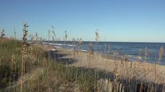 Kure beach sand dunes, nc, usa Stock Footage