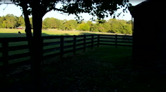 Horse Ranch at Sunset Pan Stock Footage