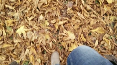 Walking in an Autumn Forest Perspective High Angle View 2 Stock Footage