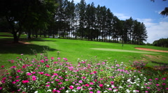 Beautiful Golf Club - flowered and quiet Stock Footage
