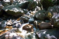 Colorful stones in the clear cold water of a creek with water from yosemite w Stock Photos