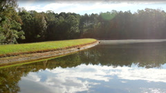 Pond in a Wooded Area Splash WS Stock Footage