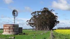 Windmill in paddock next to flowering canola crop. Stock Footage