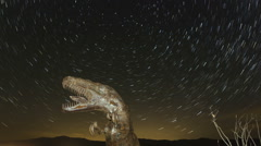 Time lapse close up of dinosaur with startrails Stock Footage