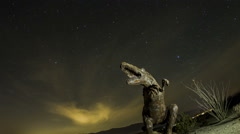 Fisheye time lapse zoom out and rotate of dinosaur with startrails - stock footage