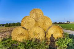 Bale of straw in autumn in intensive colors Stock Photos